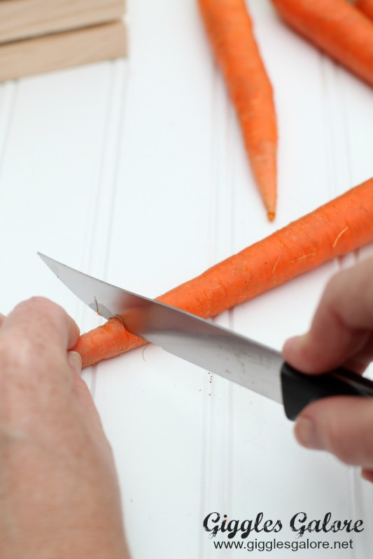 Painting-with-Carrots_Cutting-Carrot